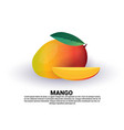 mango on white background healthy lifestyle or vector image vector image