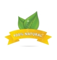 nature eco ribbon vector image vector image