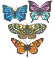 set of colorful hand-drawn butterflies vector image vector image