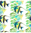 Tropical fish pattern Seamless art vector image