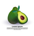avocado on white background healthy lifestyle or vector image