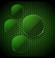 green glass circles info graphic blank vector image