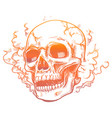 human skull in smoke smell vector image vector image