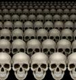 Rows of skulls vector image vector image