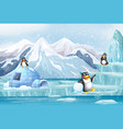 scene with penguins in snow vector image vector image