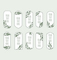 set vintage labels with green leaves vector image vector image