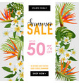 summer sale tropical banner seasonal promotion vector image vector image