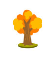 tree with yellow leaves on a vector image vector image