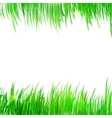 Background frame with realistic herbs vector image vector image