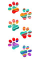colorful cat tracks vector image vector image
