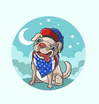 cute american dog canine vector image vector image