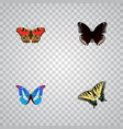 realistic spicebush bluewing checkerspot and vector image vector image