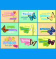 spring discount new offer vector image