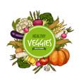 vegetables round frame food sketch vector image vector image