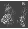 Roses design elements black background vector image