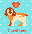 cute dog i need home text homeless animals vector image vector image