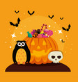 halloween card with pumpkin and skull vector image vector image