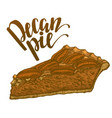 hand drawn colored of pecan pie vector image