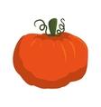 pumpkin vegetable icon vector image