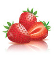 realistic strawberry vector image