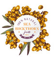 sea buckthorn jam paper emblem vector image vector image