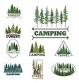 tree outdoor travel green silhouette forest badge vector image vector image