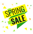 yellow and green ribbon with text spring sale on vector image
