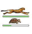 cheetah and turtle fast and slow loading bar