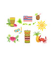 collection hawaiian traditional objects vector image