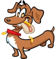 Dachshund Hot Dog vector image vector image