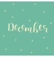 December Brush lettering vector image vector image