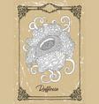drawing rafflesia vector image vector image