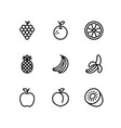 fruit line icons set outline style vector image vector image