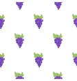 Grapes icon cartoon Singe fruit icon from the vector image vector image