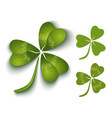 green clover vector image