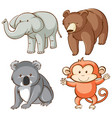 isolated picture wild animals vector image vector image