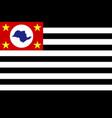 republic sao paulo flag in proportions vector image vector image