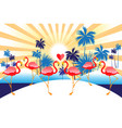 tropical background with red flamingos and vector image vector image