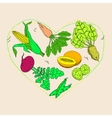Vegetable and fruit food health care heart shape vector image vector image