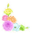 decorative element with delicate flowers object vector image vector image