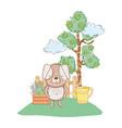 little dog in the garden vector image
