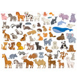 series various land and sea animals vector image