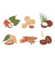 set nuts icons vector image vector image
