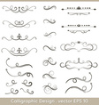 Set of hand drawn calligraphic and decorative vector image vector image