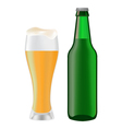 beer bottle 05 vector image vector image