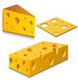 Cheese set vector image