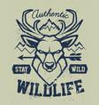 deer mascot grunge emblem design vector image