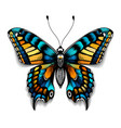 tattoo tropical realistic butterfly with shadow vector image