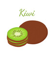 tropical fruit exotic kiwi flat style vector image vector image