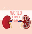 world kidney day campaign awareness medical vector image
